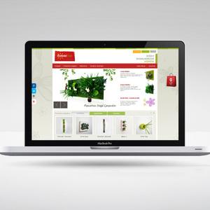 FlowerBox Online Satış Sitesi